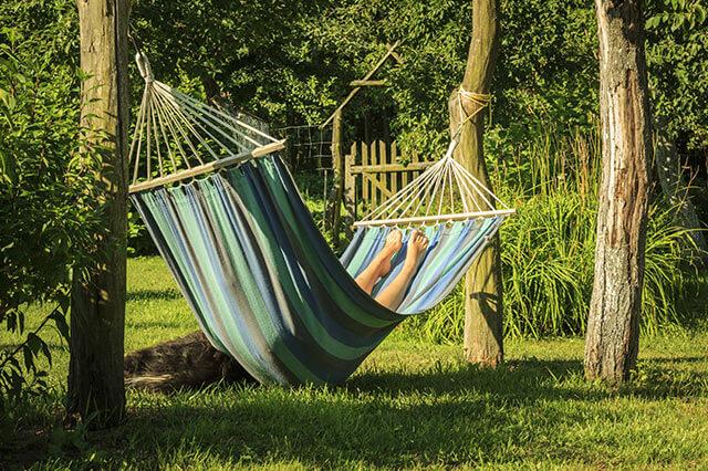 fotostrecke der garten im sommer wetteronline. Black Bedroom Furniture Sets. Home Design Ideas